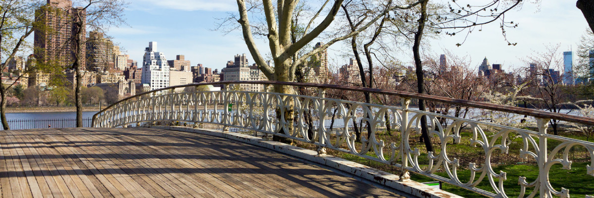 Central Park Wooden Bridge